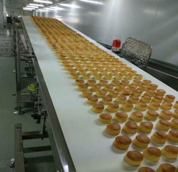 食品加工机器输送带有哪些优点